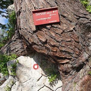 Tamar - skozi Grlo - Slemenova špica - mimo Črnih vod - Tamar